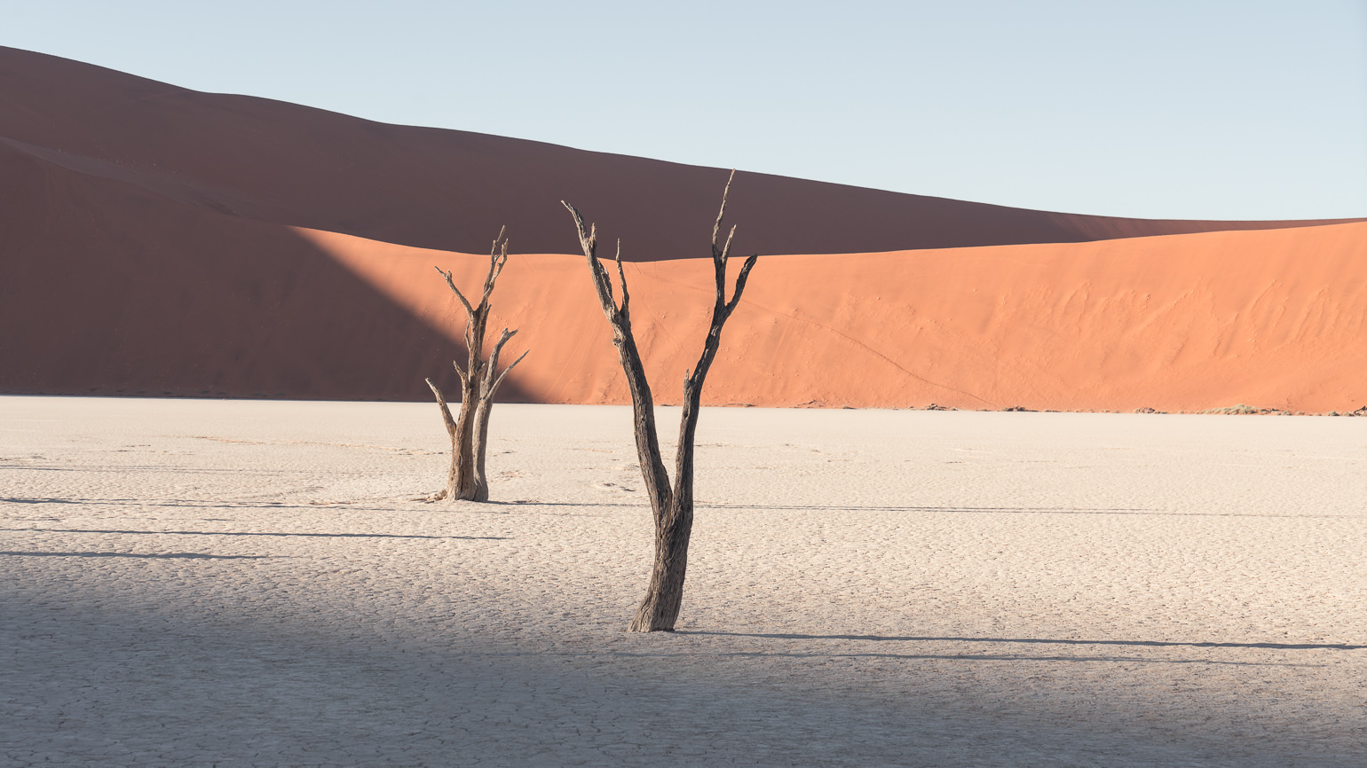 Dawn breaks over the skeleton trees of the Deadvlei pan in Sossusvlei, Namibia