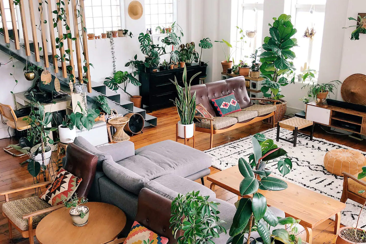 A beautiful plant-filled Airbnb space in Auckland