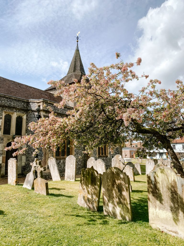 A tree laden with blossom arches over the gravestones in Mickelham churchyard