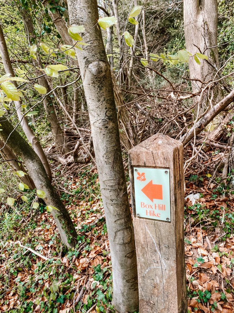 A red sign points the way to the Box Hill hike