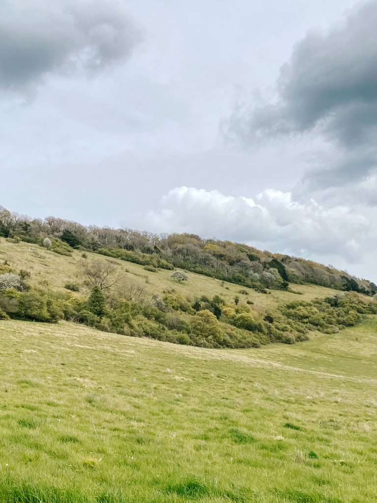 Rolling hills of green with cloudy grey skies above them