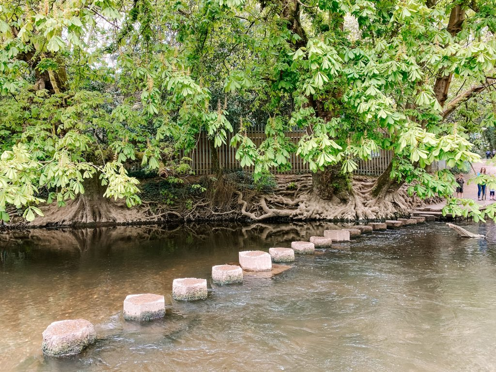 Stepping stones across the River Mole near box hill