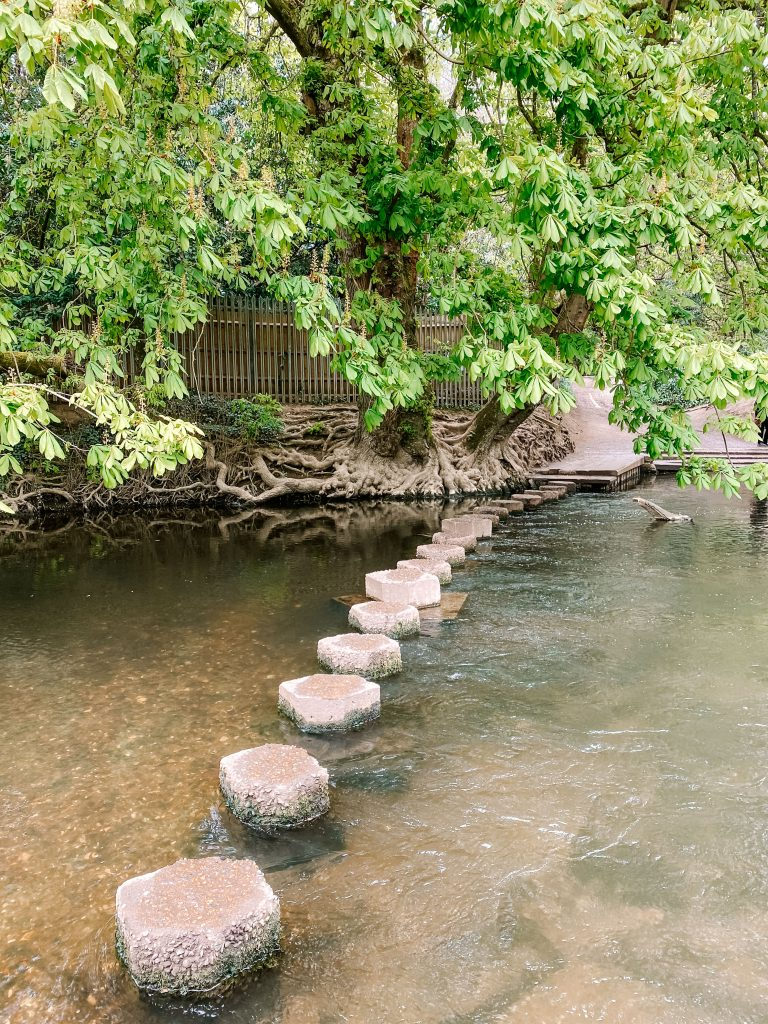 Stepping stones cross the River Mole near Box Hill in Surrey