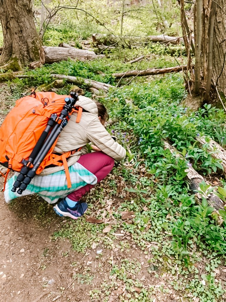 A woman with an orange rucksack crouches down and takes photos of flowers in a woodland