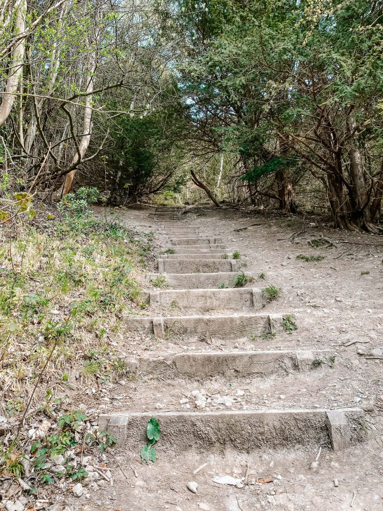 The steep steps going up Whitehill in Surrey